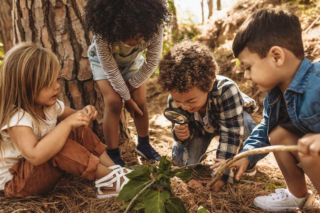 Kids looking at leaf